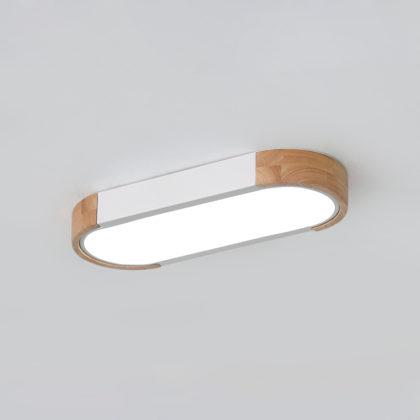 Потолочный светильник REUS