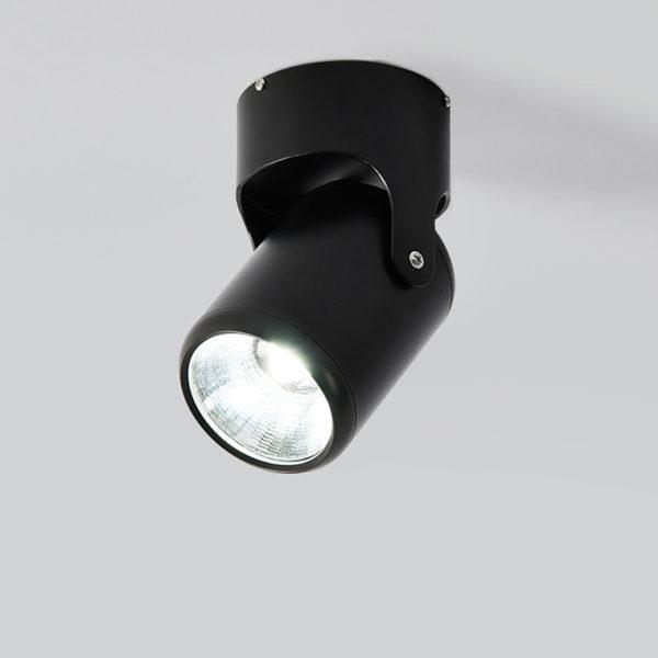 Точечный светильник ASHBOURNE