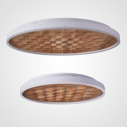Потолочный светильник FOLIGNO