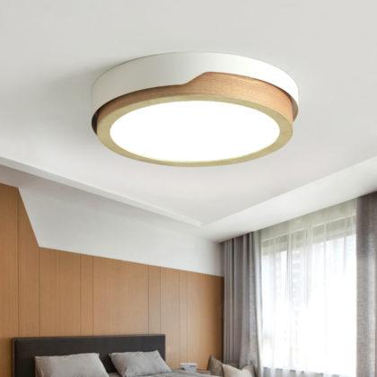 Потолочный светильник EVA