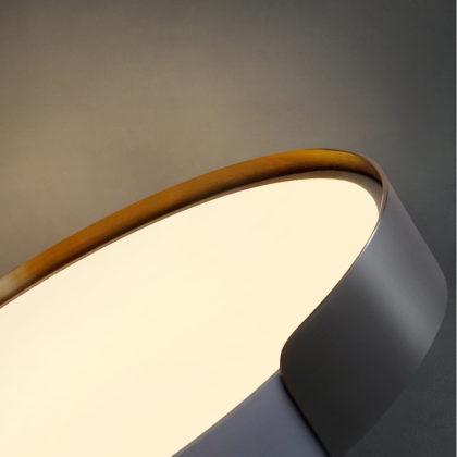 Потолочный светильник ELOISE