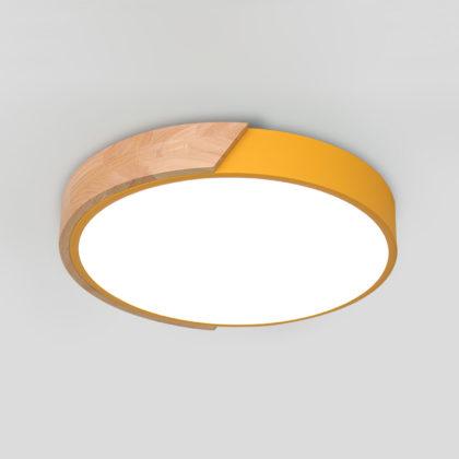 Потолочный светильник TERNI