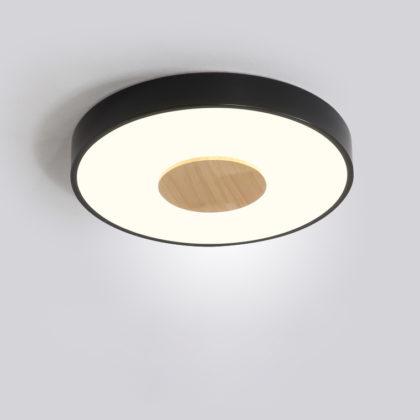 Потолочный светильник LORAIN