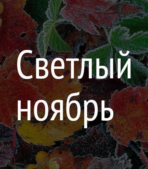 Светлый ноябрь